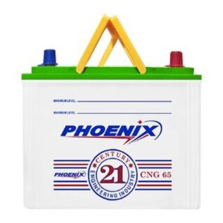 Phoenix CNG 65 buy online Battery Ustad